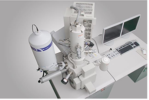field emission scanning electron