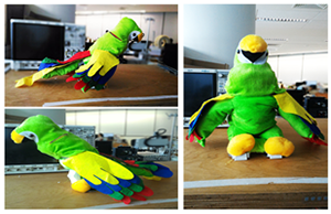 Biomedical robotics companion parrot